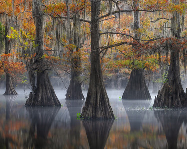 NEW RELEASE!!! Autumn on the Bayou