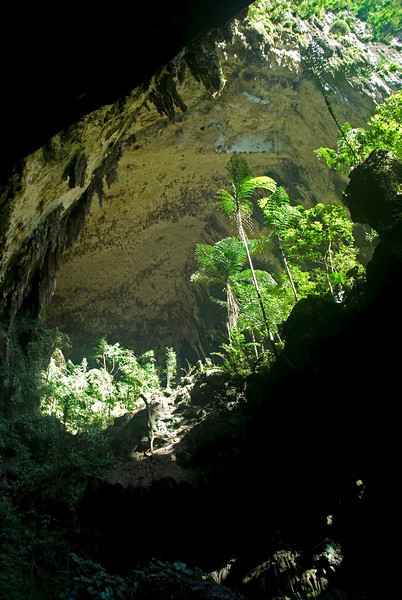 Shot of the Deer Cave entrance at the Mulu National Park - Sarawak Malaysia