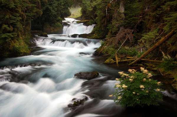 Oregon Waterfalls-By Lori