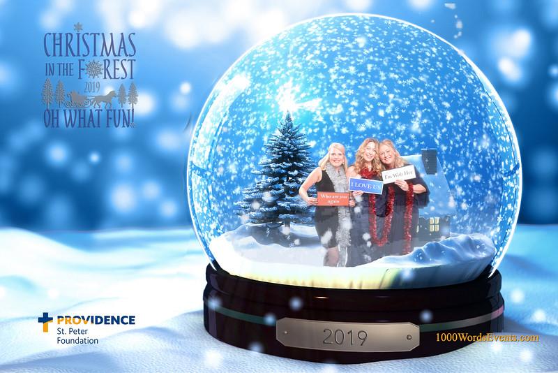 Providence Christmas Forest-067.jpg