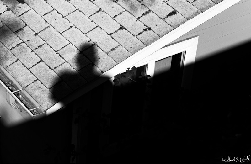 shadow dance# 2