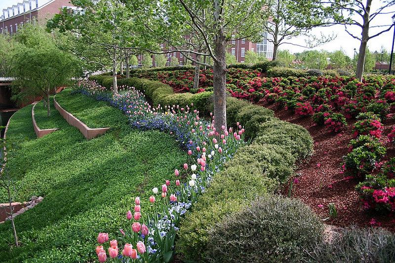Flowers - Chesapeake Energy