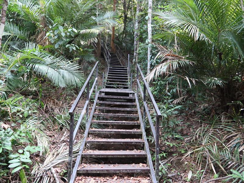 IMG_5269-handrails.JPG