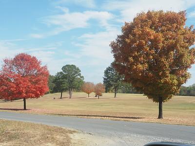 Fall Views 2016
