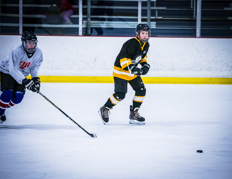 Bruins2-456.jpg