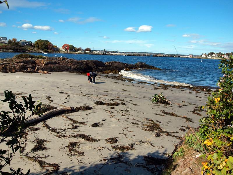 """The """"Wee Beach"""" - Bailey Island"""