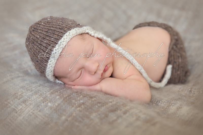 Logan's Newborn Portraits