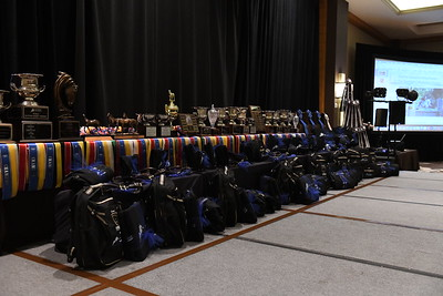 Trophies and Ribbons
