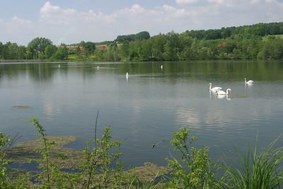 Une balade dans la vallée de la Dyle (entre Oud-Heverlee et Sint-Joris-Weert )