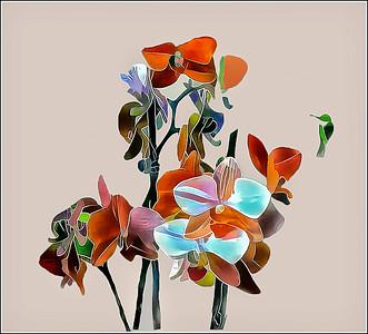 Orchids Fantasy