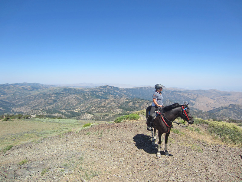 Trail riding to the top of War Eagle mountain in the Owyhees near Silver City