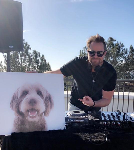 Doggies on deck-4.jpg