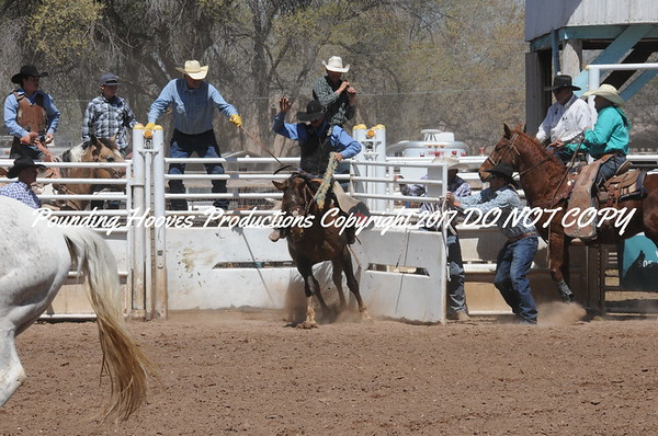 Perf Saddle Bronc