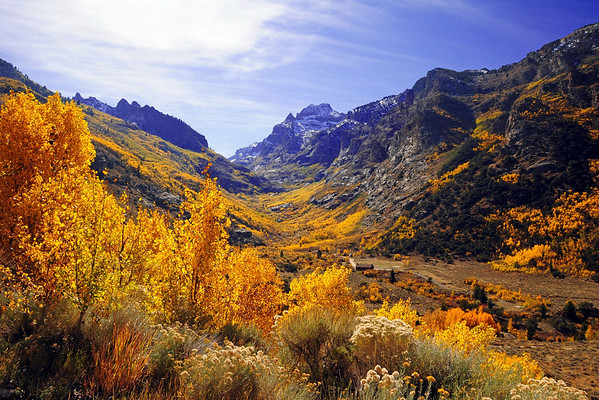 Fallscapes-Ruby Mountains & Lamoille Canyon
