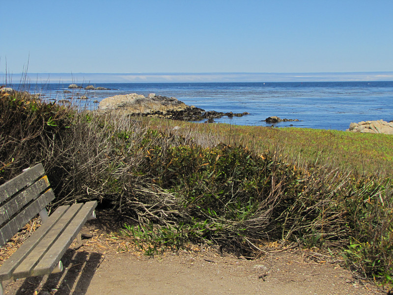 Monterey Bay, just north of the Pacific Grove Municipal Golf Course