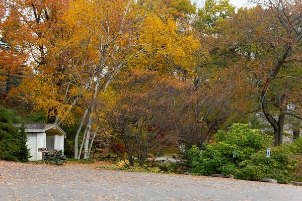Hidden Lake Gardens 10-30-18