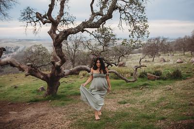 Nicole's Maternity Session Jan 2019_ Roseville Maternity photographer