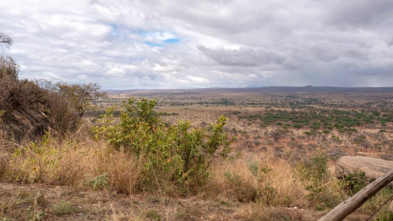 Tanzania-Tarangire-National-Park-Lemala-Mpingo-Ridge-25.jpg