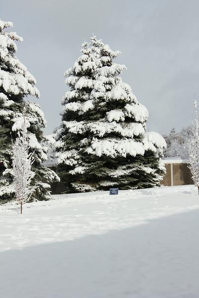 Snowy_Morning_11_10_2012_3307.JPG