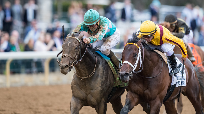 My Boy Jack (Creative Cause) wins the Lexington (G3) at Keeneland on 4.14.2018. Kent Desormeaux up, Keith Desormeaux trainer, Don't Tell My Wife Stables and Monomoy Stables owners.