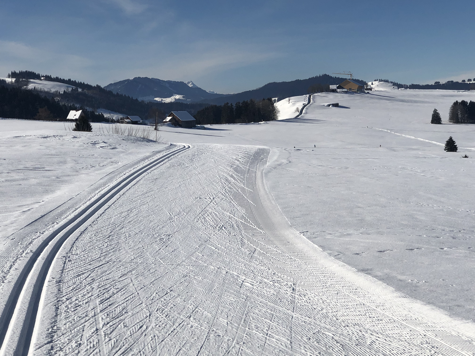 Well skied trails