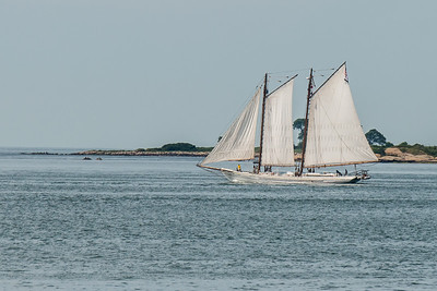 Other Tall Ships