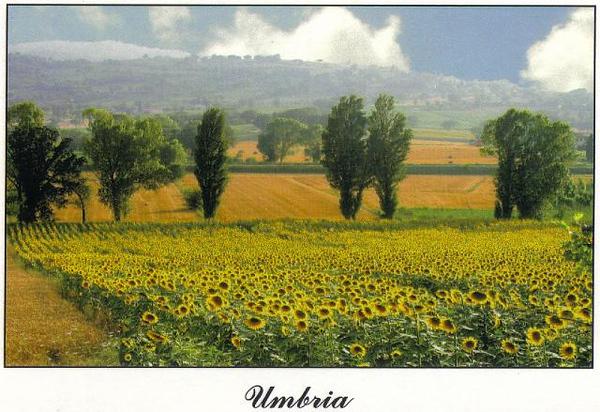 0506_Umbria_Countryside.jpg