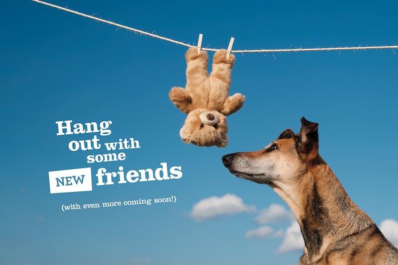 FluffTuff dog toys1.jpg