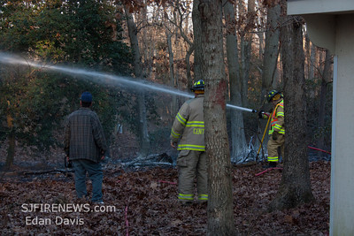 01-08-2012, Woods, Pittsgrove Twp. Salem County, Lake View Dr.