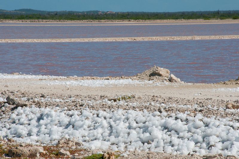 Salt scattered on the island of Bonaire