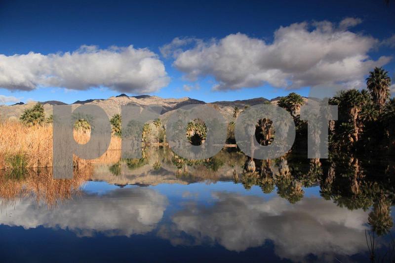 Agua Caliente 7302.jpg