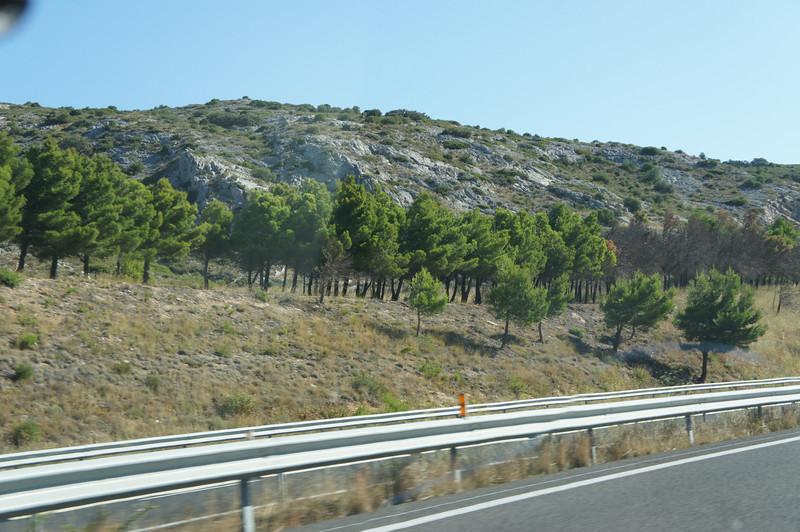 2011-08-503-Испания-Франция-Тулуза.JPG