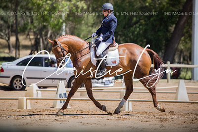 Henty Dressage 26th November 2016
