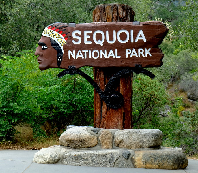 California Day 6 Sequoia 05-30-2017 1.JPG