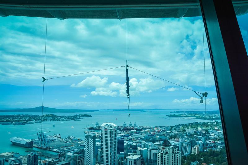 Auckland-19.jpg
