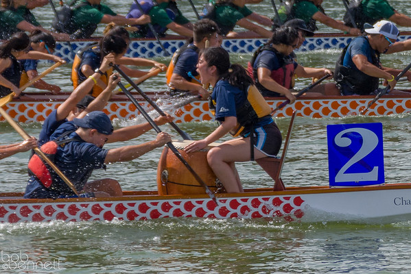 Dragon Boat Races-March 2015