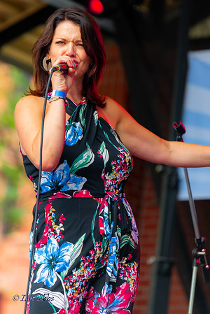 Joyann Parker at Lowertown Blues & Funk Fest 190720