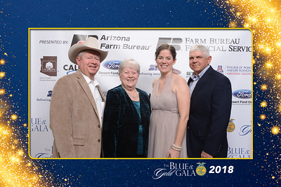 Blue & Gold Gala 2018