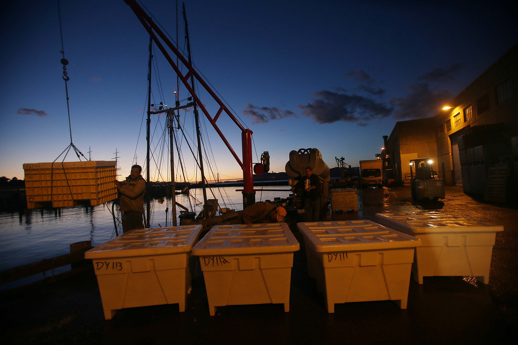 . The day winds down as fish are hauled in at the  San Francisco Community Fishing Association dock on Pier 45 in San Francisco, Calif., on Friday, Feb. 8, 2013.  (Jane Tyska/Staff)