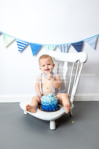 Bodie is ONE! : Raleigh, NC