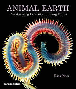 """Animal Earth"""