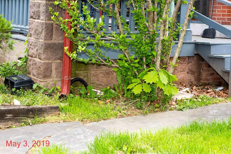 2019-05-03-513 to 517 E High-027.jpg
