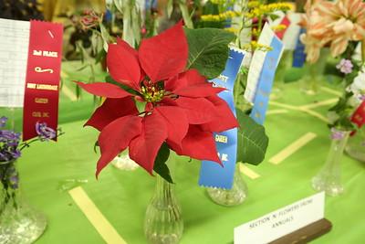 Fort Lauderdale Garden Club 2018 Flower Show