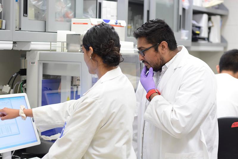 CHIRP 2019 labs035.JPG