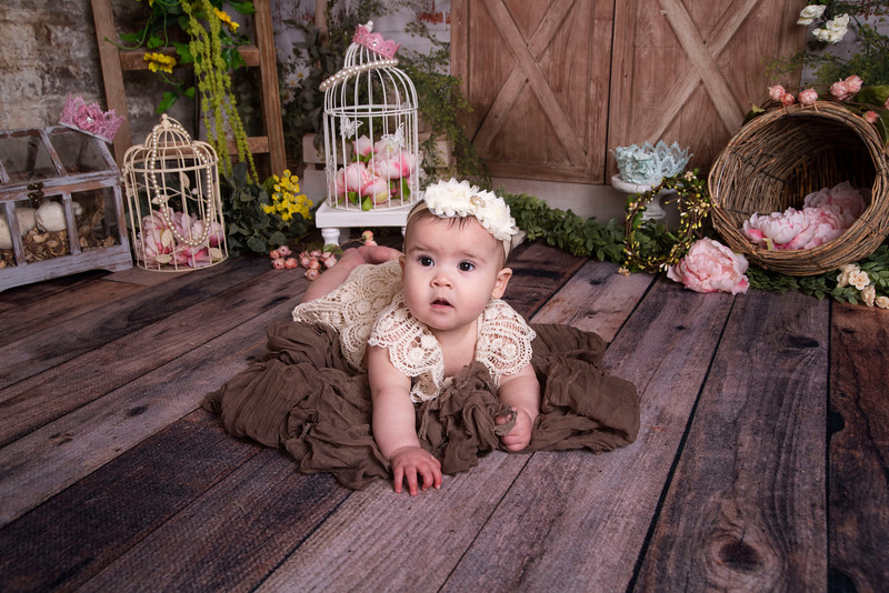 Wrenly 6 Month 2021