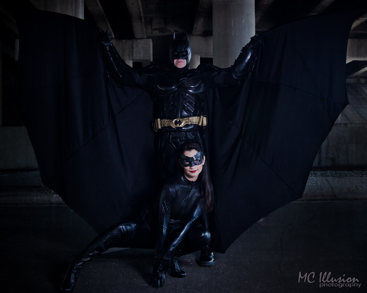 Ivy Tom Catwoman Batman_9735-2a1.jpg