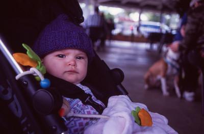 Baby Alice Steiner