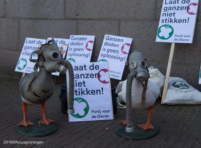 groningen 2016-centrum-laat ganzen niet stikken