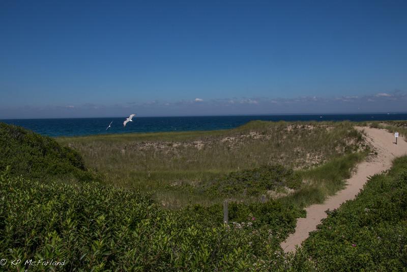 Dunes at North Lighthouse, Block Island, RI
