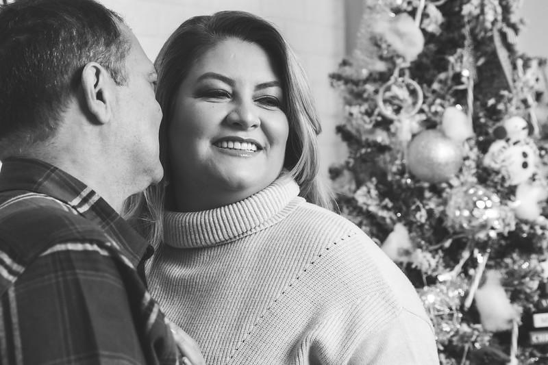 12.18.19 - Vanessa's Christmas Photo Session 2019 - 11.jpg